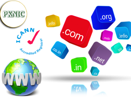 Web Hosting Company in Peshawar announced free .pk domain registrations